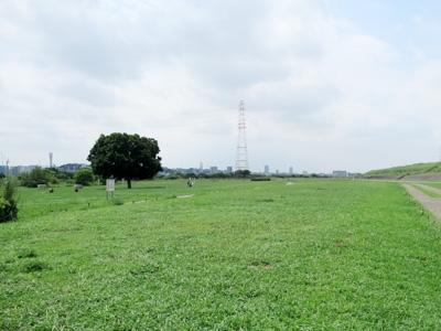 淀川河川公園大塚地区