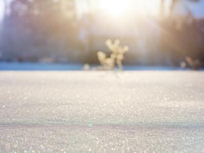 平成最後の冬は暖冬の模様